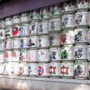 [Shibuya, Tokyo] Meiji Shrine and Harajuku