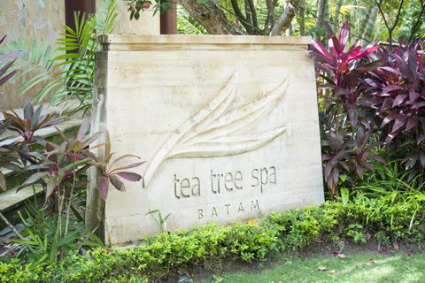 holiday_inn_batam_tea_tree_spa_01